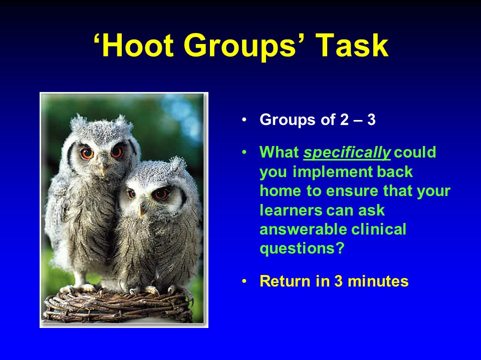 'Hoot Groups' Task Groups of 2 – 3 What specifically could you implement back home to ensure that your learners can ask answerable clinical questions.