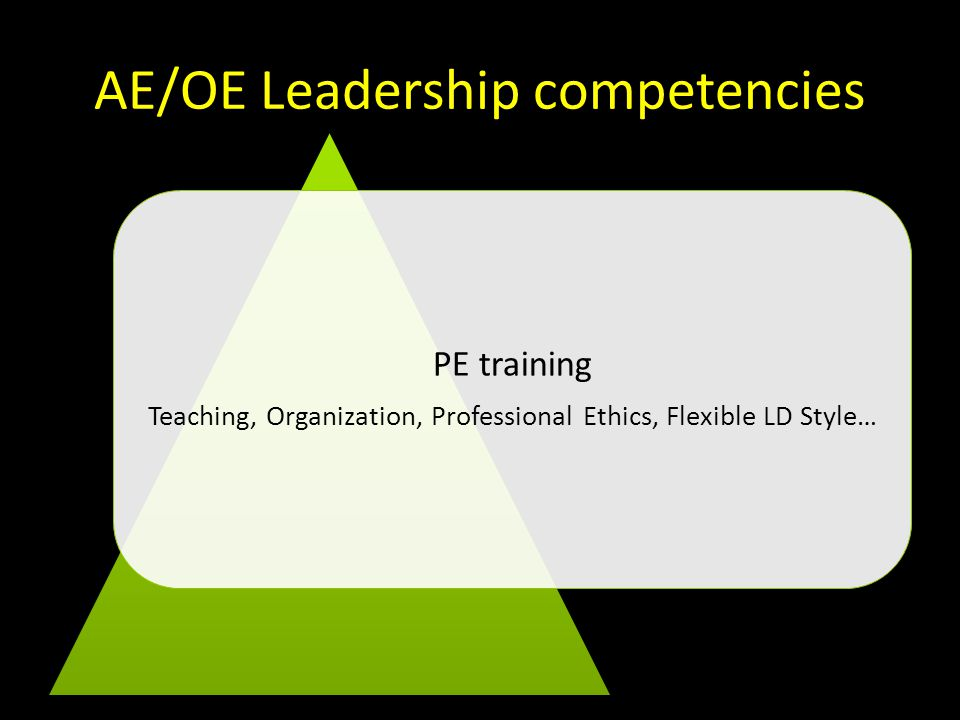 AE/OE Leadership competencies PE training Teaching, Organization, Professional Ethics, Flexible LD Style…