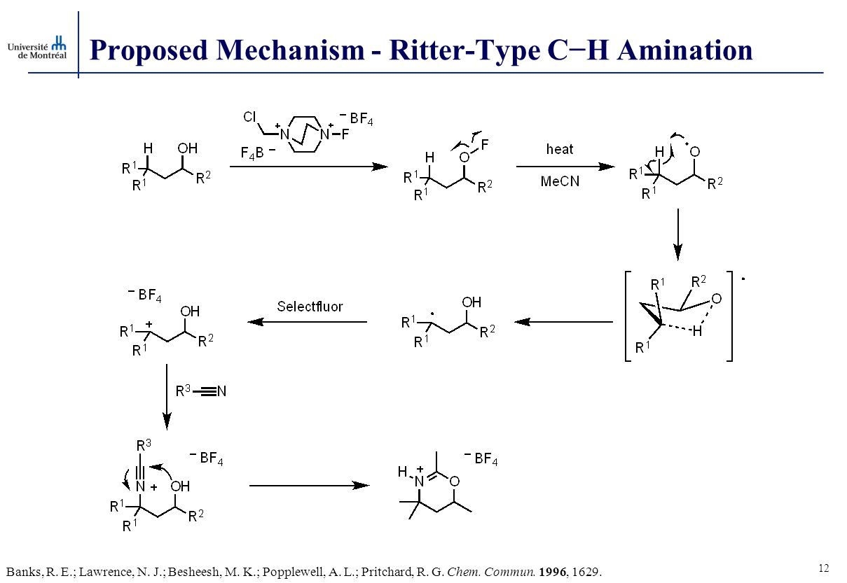 Proposed Mechanism - Ritter-Type C−H Amination 12 Banks, R.