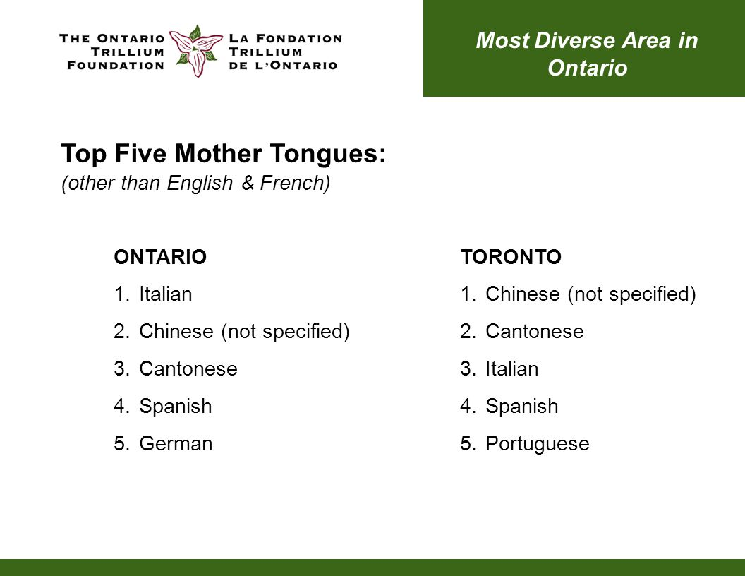 Top Five Mother Tongues: (other than English & French) ONTARIO 1.Italian 2.Chinese (not specified) 3.Cantonese 4.Spanish 5.German Most Diverse Area in Ontario TORONTO 1.Chinese (not specified) 2.Cantonese 3.Italian 4.Spanish 5.Portuguese