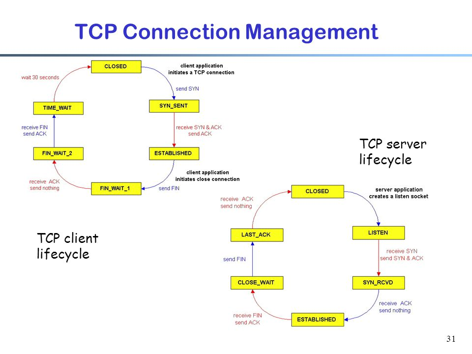 31 TCP Connection Management TCP client lifecycle TCP server lifecycle