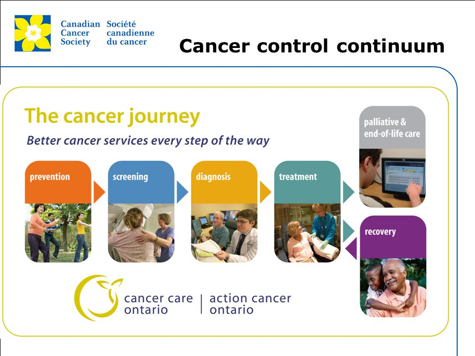 This grey area will not appear in your presentation. Cancer control continuum
