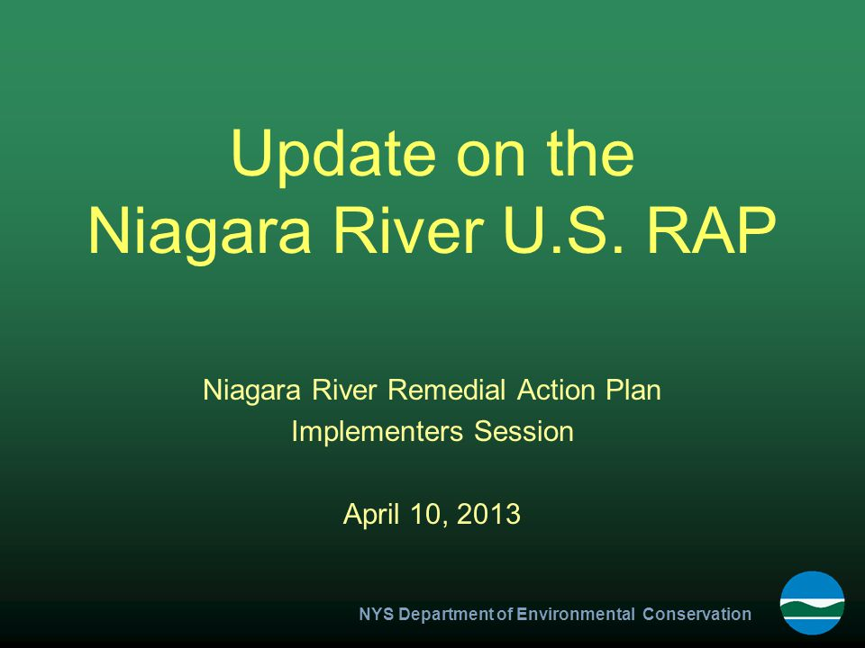 NYS Department of Environmental Conservation Update on the Niagara River U.S.