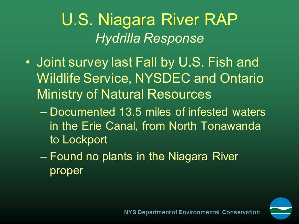 NYS Department of Environmental Conservation U.S. Niagara River RAP Joint survey last Fall by U.S.