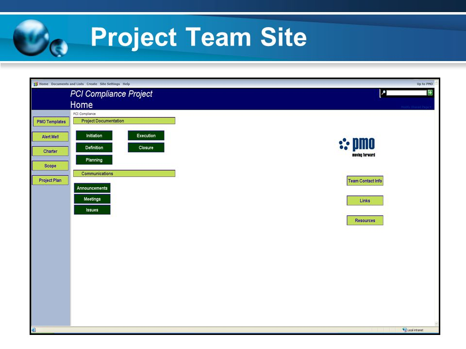 Project Team Site