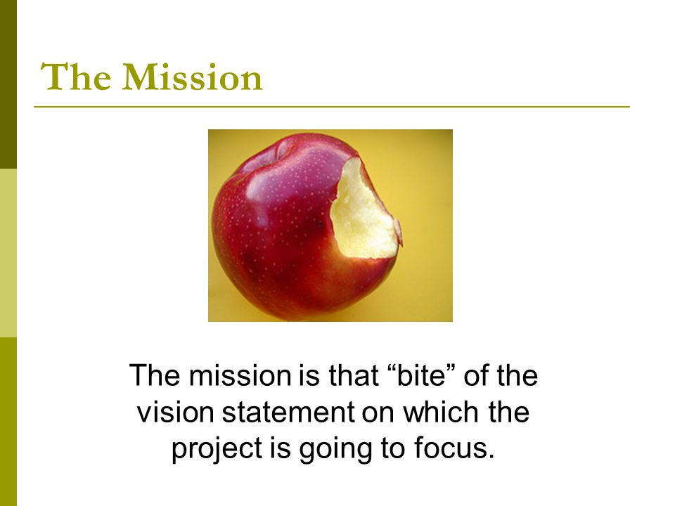 The mission is that bite of the vision statement on which the project is going to focus.