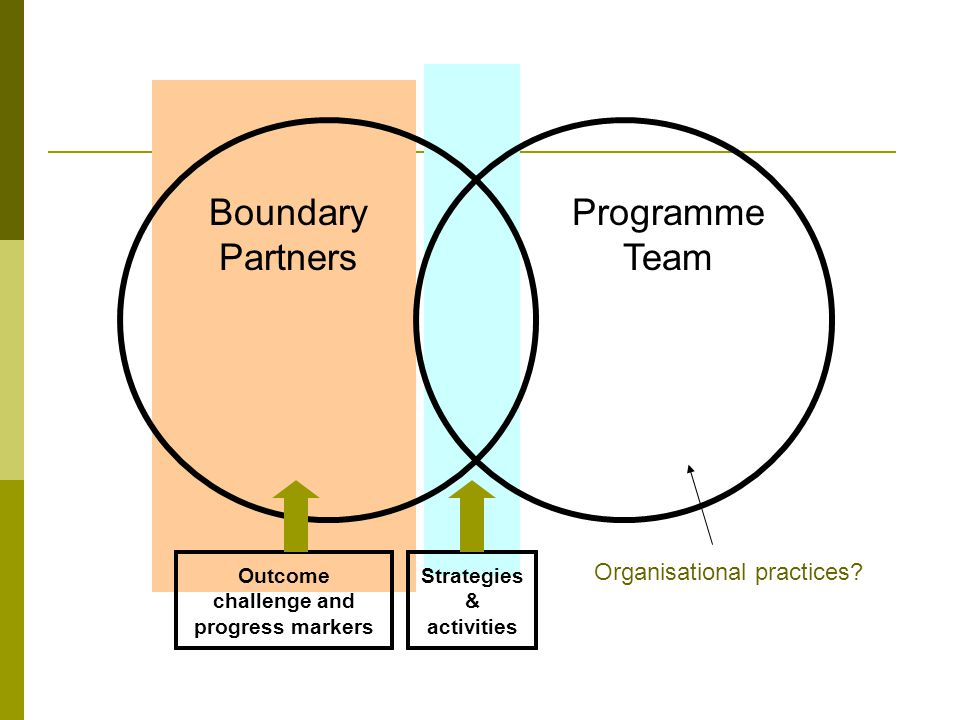 Outcome challenge and progress markers Boundary Partners Programme Team Organisational practices.