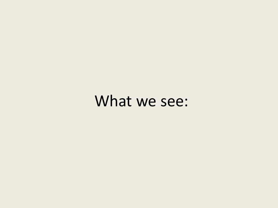 What we see: