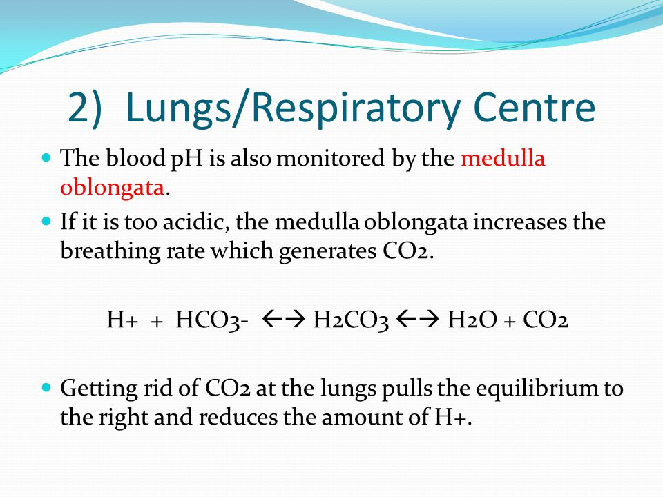 2) Lungs/Respiratory Centre The blood pH is also monitored by the medulla oblongata.