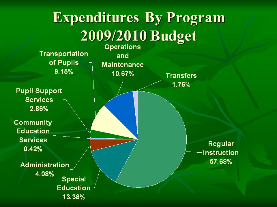 Expenditures By Program 2009/2010 Budget