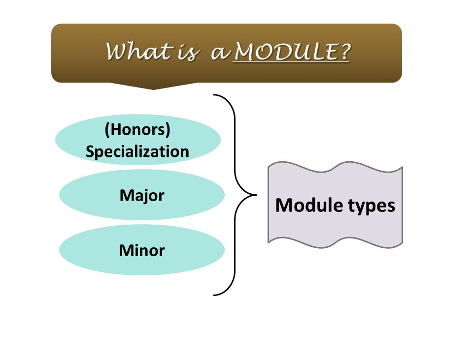 What is a module (Honors) Specialization Module types Major Minor