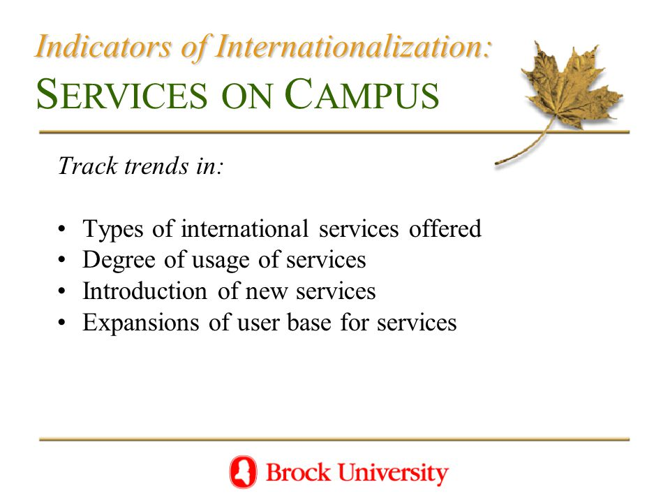 Indicators of Internationalization: Indicators of Internationalization: S ERVICES ON C AMPUS Track trends in: Types of international services offered Degree of usage of services Introduction of new services Expansions of user base for services