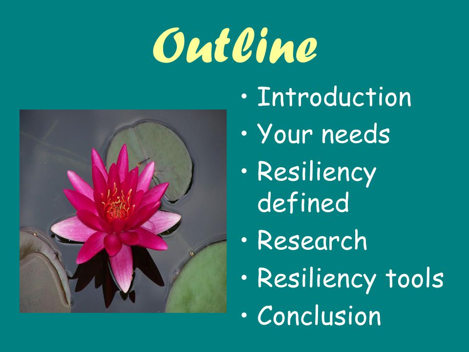 Outline Introduction Your needs Resiliency defined Research Resiliency tools Conclusion