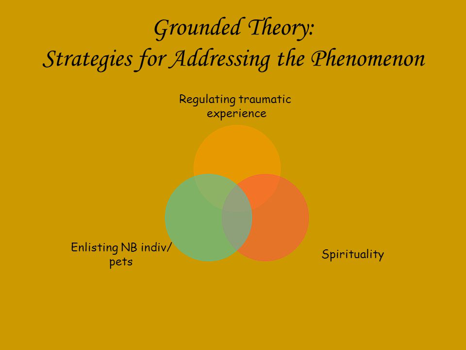 Grounded Theory: Strategies for Addressing the Phenomenon Regulating traumatic experience Spirituality Enlisting NB indiv/ pets