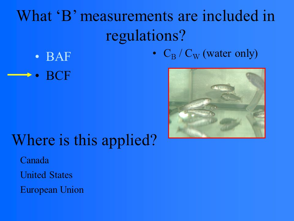 BAF BCF C B / C W (water only) Where is this applied.
