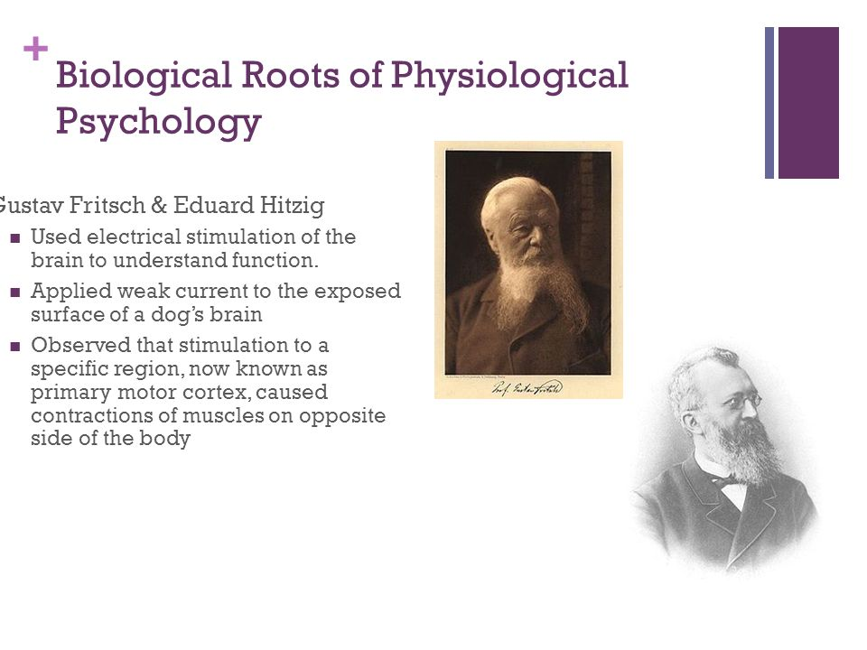 + Biological Roots of Physiological Psychology Gustav Fritsch & Eduard Hitzig Used electrical stimulation of the brain to understand function.