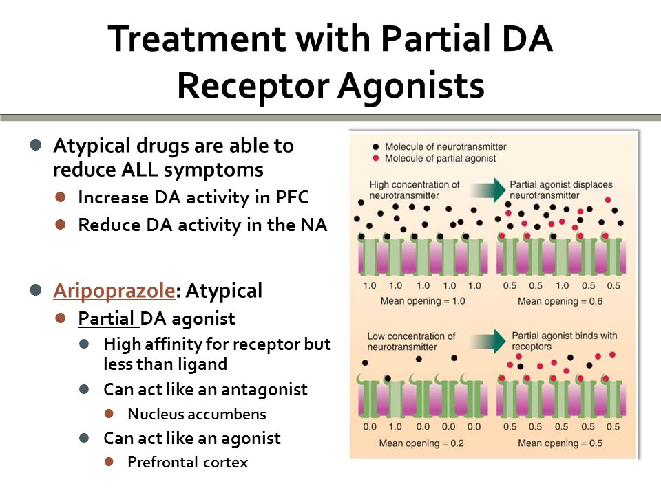 Treatment with Partial DA Receptor Agonists Atypical drugs are able to reduce ALL symptoms Atypical drugs are able to reduce ALL symptoms Increase DA activity in PFC Increase DA activity in PFC Reduce DA activity in the NA Reduce DA activity in the NA Aripoprazole: Atypical Aripoprazole: Atypical Partial DA agonist Partial DA agonist High affinity for receptor but less than ligand High affinity for receptor but less than ligand Can act like an antagonist Can act like an antagonist Nucleus accumbens Nucleus accumbens Can act like an agonist Can act like an agonist Prefrontal cortex Prefrontal cortex