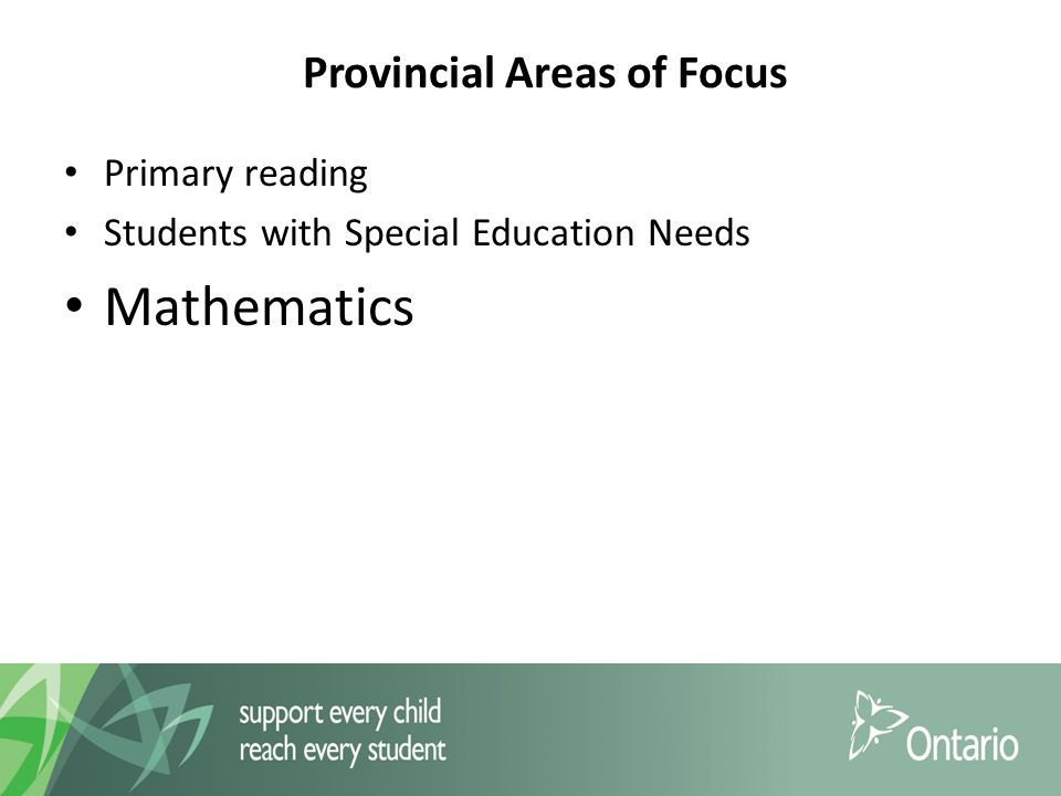 Provincial Areas of Focus Primary reading Students with Special Education Needs Mathematics