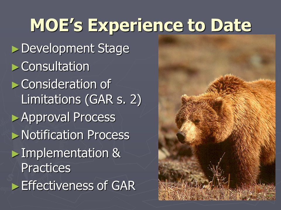 MOE's Experience to Date ► Development Stage ► Consultation ► Consideration of Limitations (GAR s.