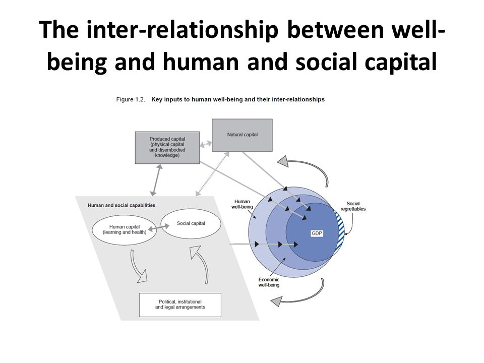 The inter-relationship between well- being and human and social capital