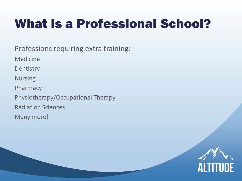 What is a Professional School.