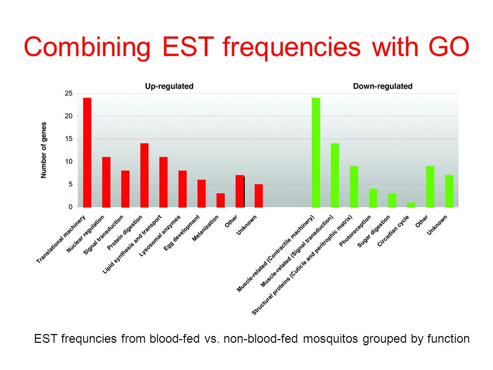 Combining EST frequencies with GO EST frequncies from blood-fed vs.