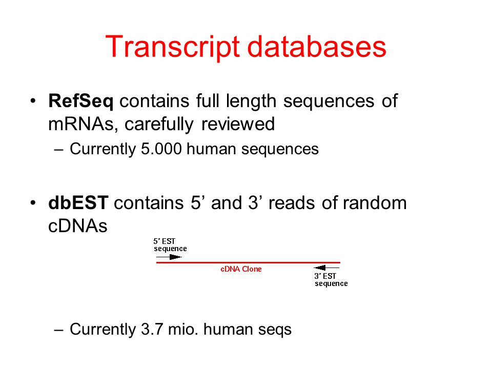 Transcript databases RefSeq contains full length sequences of mRNAs, carefully reviewed –Currently 5.000 human sequences dbEST contains 5' and 3' reads of random cDNAs –Currently 3.7 mio.