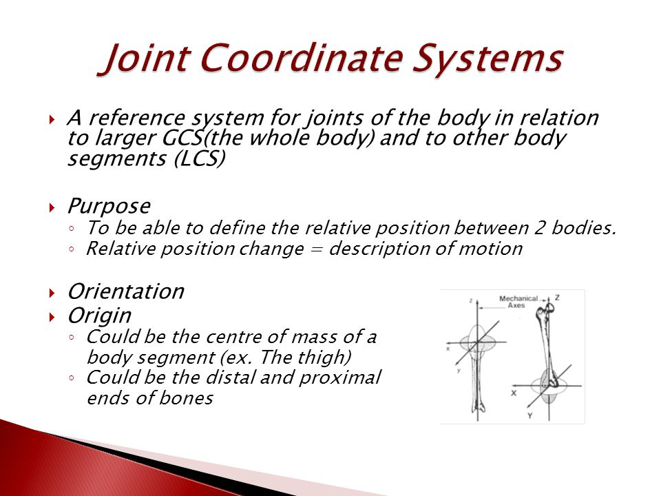  A reference system for joints of the body in relation to larger GCS(the whole body) and to other body segments (LCS)  Purpose ◦ To be able to define the relative position between 2 bodies.