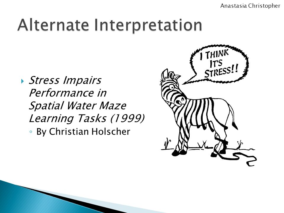  Stress Impairs Performance in Spatial Water Maze Learning Tasks (1999) ◦ By Christian Holscher Anastasia Christopher