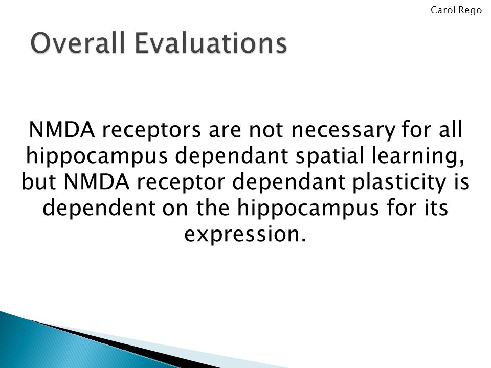 NMDA receptors are not necessary for all hippocampus dependant spatial learning, but NMDA receptor dependant plasticity is dependent on the hippocampus for its expression.