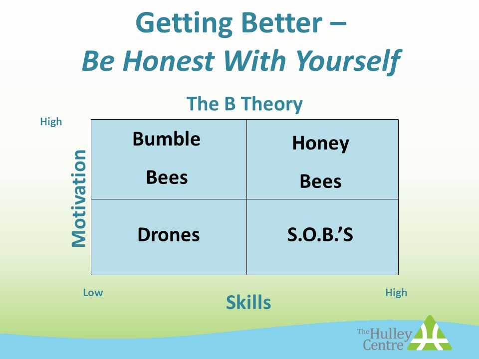 Getting Better – Be Honest With Yourself The B Theory Motivation Skills Honey Bees Bumble Bees DronesS.O.B.'S LowHigh