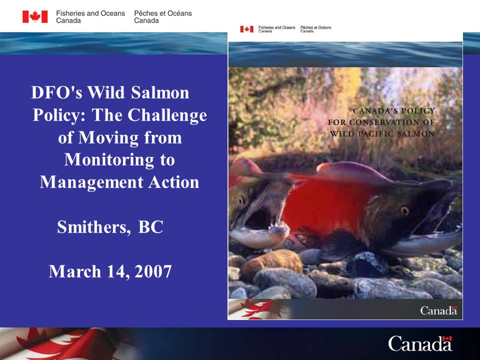 DFO s Wild Salmon Policy: The Challenge of Moving from Monitoring to Management Action Smithers, BC March 14, 2007
