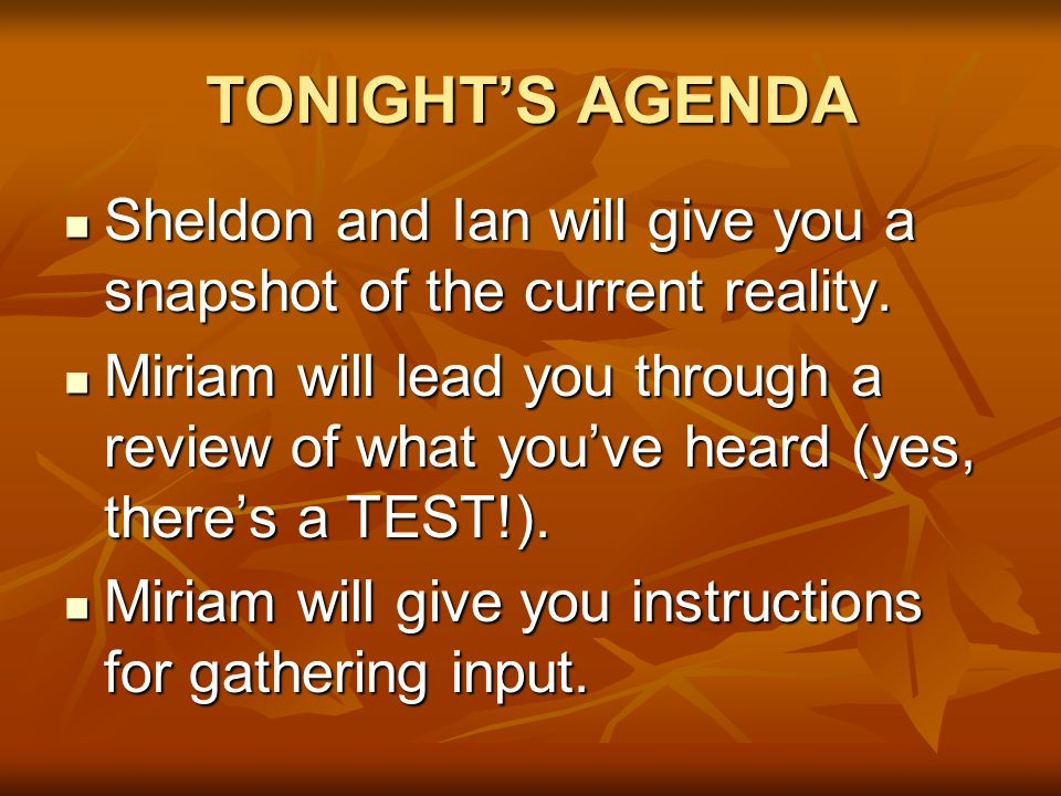 TONIGHT'S AGENDA Sheldon and Ian will give you a snapshot of the current reality.