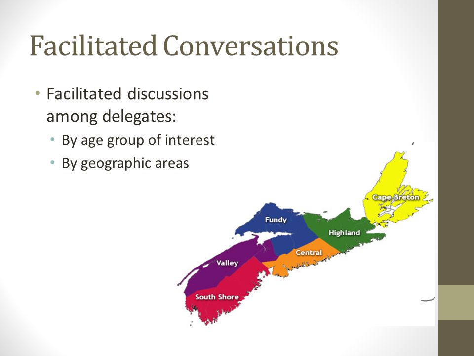 Facilitated Conversations Facilitated discussions among delegates: By age group of interest By geographic areas
