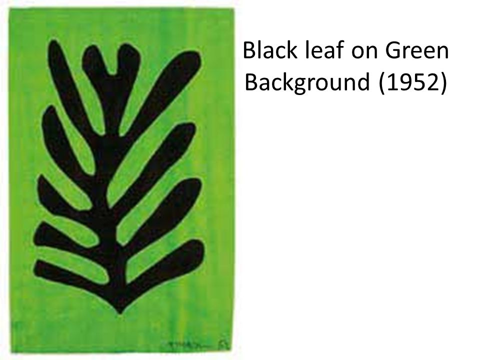 Black leaf on Green Background (1952)