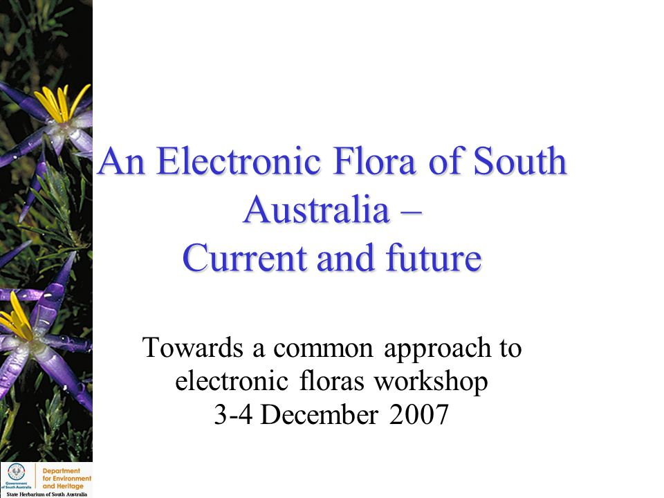 An Electronic Flora of South Australia – Current and future Towards a common approach to electronic floras workshop 3-4 December 2007
