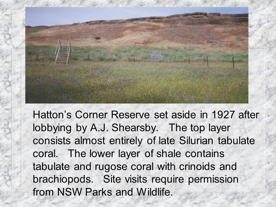 Hatton's Corner Reserve set aside in 1927 after lobbying by A.J.