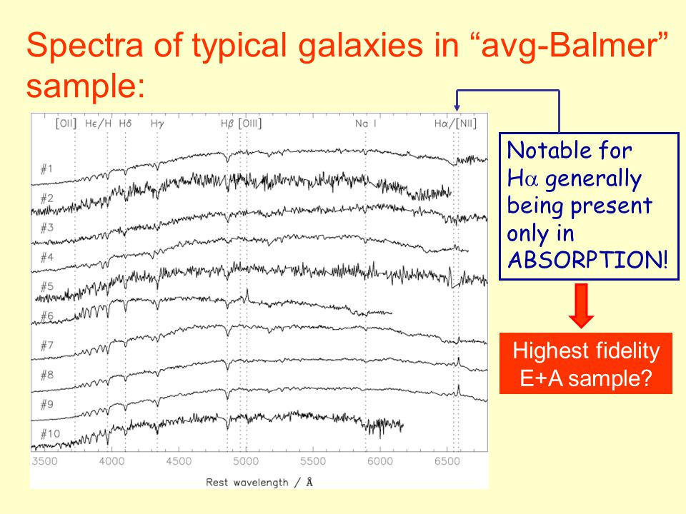 Spectra of typical galaxies in avg-Balmer sample: Notable for H  generally being present only in ABSORPTION.