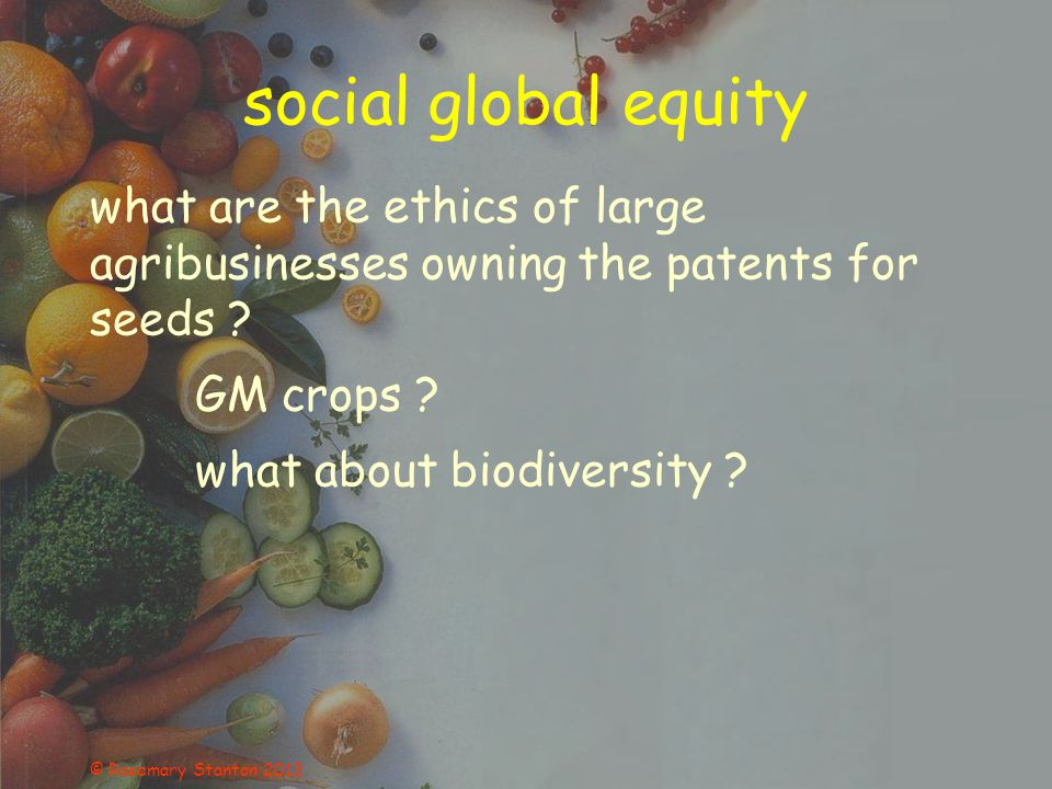 © Rosemary Stanton 2013 social global equity what are the ethics of large agribusinesses owning the patents for seeds .
