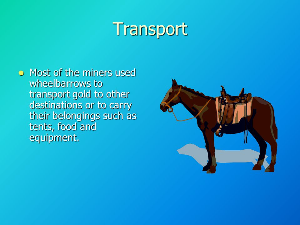 Transport Most of the miners used wheelbarrows to transport gold to other destinations or to carry their belongings such as tents, food and equipment.