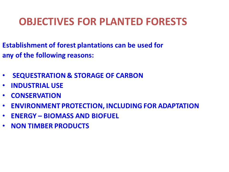OBJECTIVES FOR PLANTED FORESTS Establishment of forest plantations can be used for any of the following reasons: SEQUESTRATION & STORAGE OF CARBON INDUSTRIAL USE CONSERVATION ENVIRONMENT PROTECTION, INCLUDING FOR ADAPTATION ENERGY – BIOMASS AND BIOFUEL NON TIMBER PRODUCTS