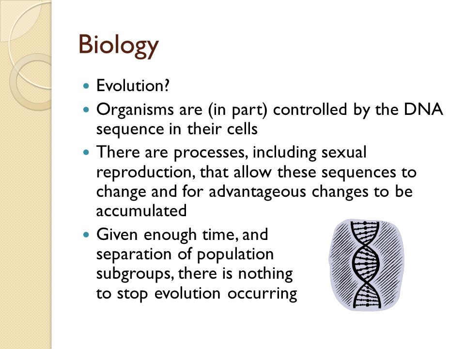 Biology Evolution.