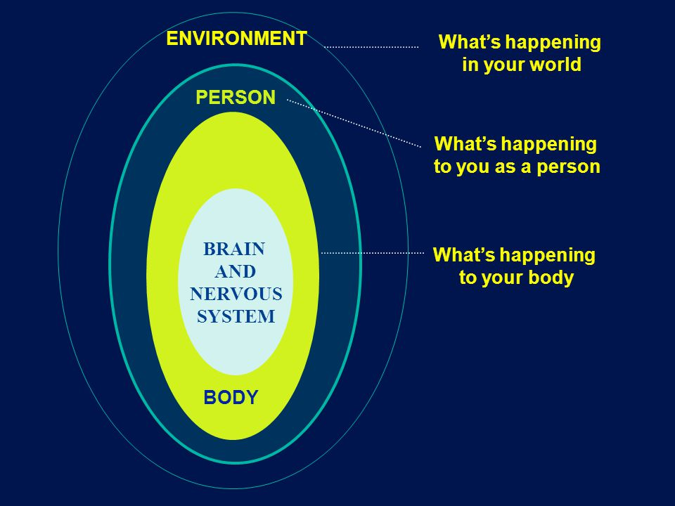 BRAIN AND NERVOUS SYSTEM ENVIRONMENT PERSON BODY What's happening to your body What's happening to you as a person What's happening in your world