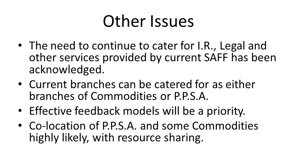 Other Issues The need to continue to cater for I.R., Legal and other services provided by current SAFF has been acknowledged.