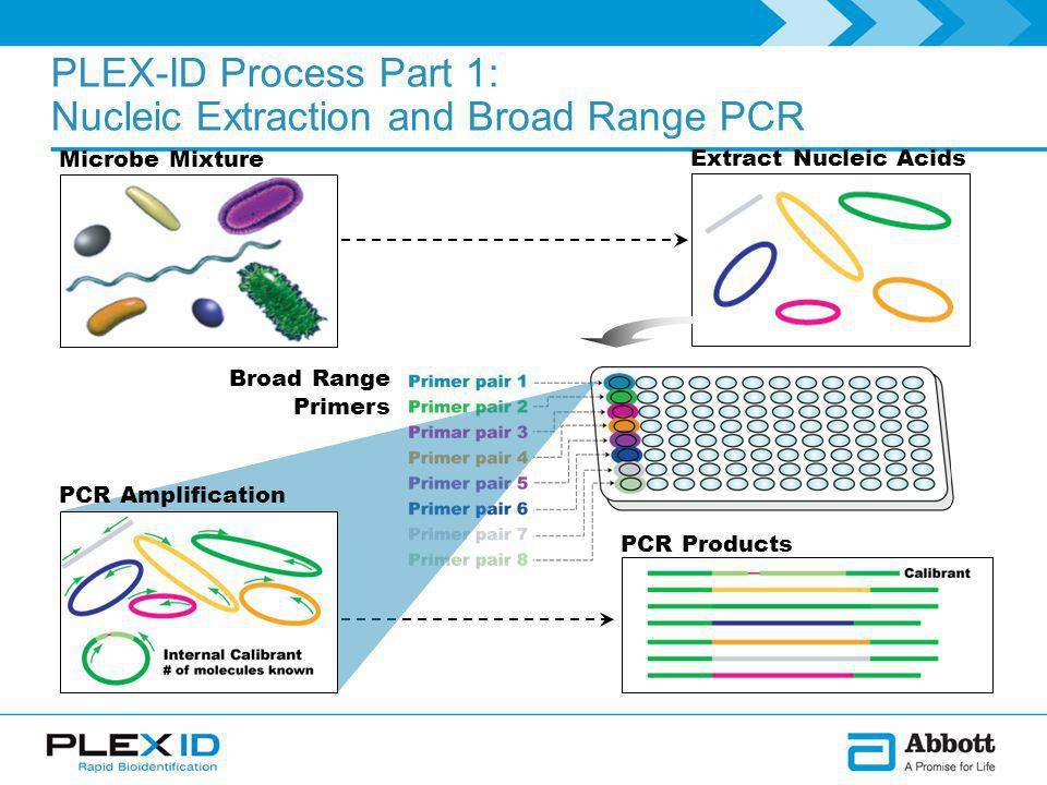 PLEX-ID Process Part 1: Nucleic Extraction and Broad Range PCR Microbe Mixture PCR Products Extract Nucleic Acids Broad Range Primers PCR Amplification