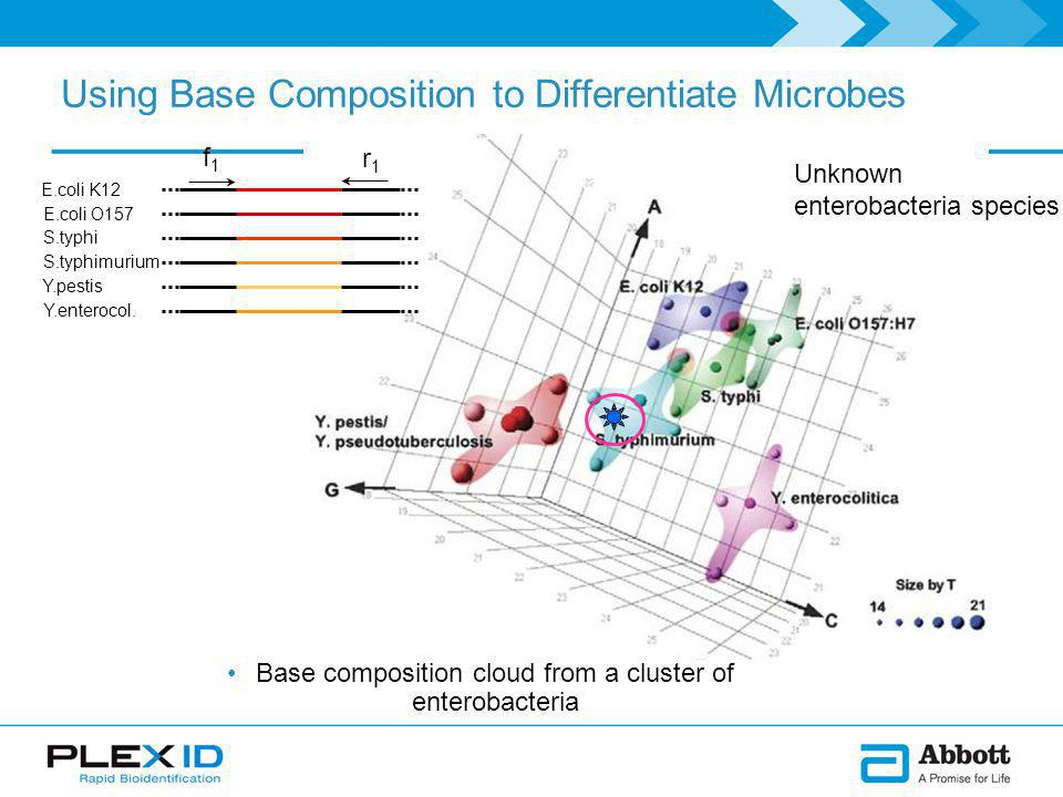 Using Base Composition to Differentiate Microbes Unknown enterobacteria species Base composition cloud from a cluster of enterobacteria Y.enterocol.