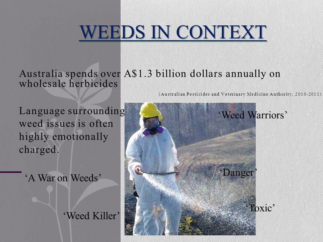 Australia spends over A$1.3 billion dollars annually on wholesale herbicides (Australian Pesticides and Veterinary Medicine Authority, 2010-2011).