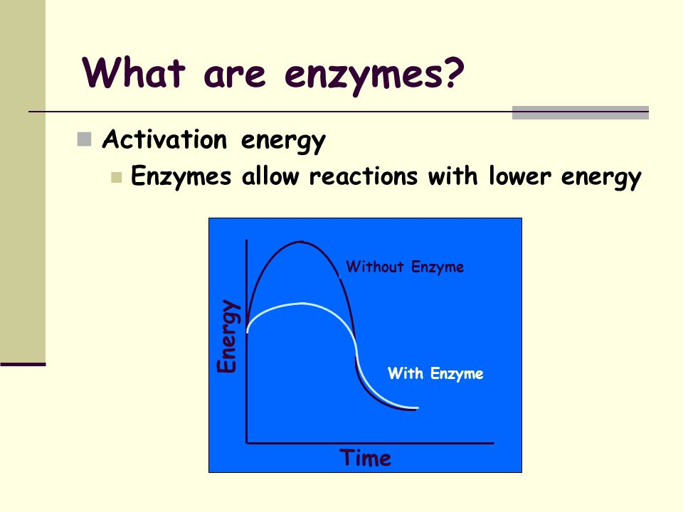 What are enzymes Enzymes are specific Lock and key analogy Enzyme Substrate A Product B Product C