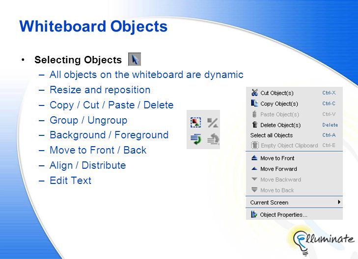 Whiteboard Objects Selecting Objects –All objects on the whiteboard are dynamic –Resize and reposition –Copy / Cut / Paste / Delete –Group / Ungroup –Background / Foreground –Move to Front / Back –Align / Distribute –Edit Text