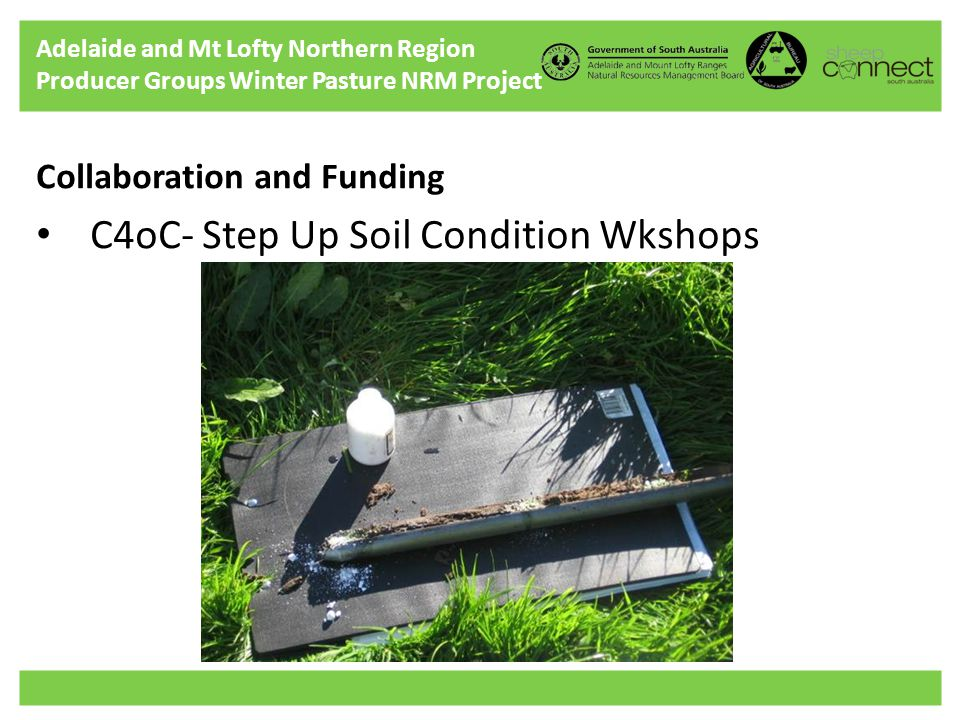 Adelaide and Mt Lofty Northern Region Producer Groups Winter Pasture NRM Project Collaboration and Funding C4oC- Step Up Soil Condition Wkshops
